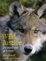 'Wild Justice' by Marc Bekoff